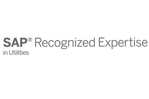 Partner SAP Recognized Expertise